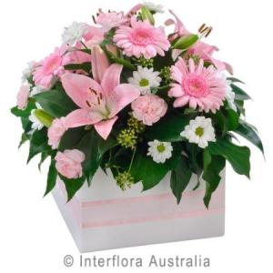 Box of Flowers